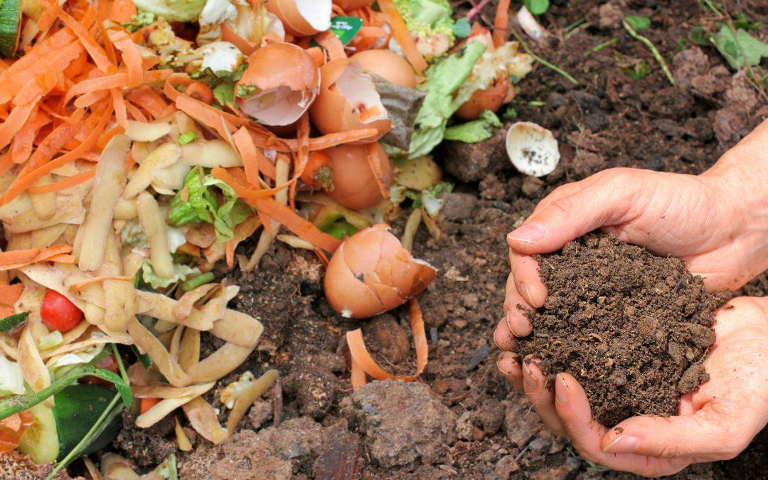 10 Secrets to Effective Composting