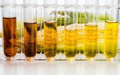10 Health Dangers of High Fructose Corn Syrup